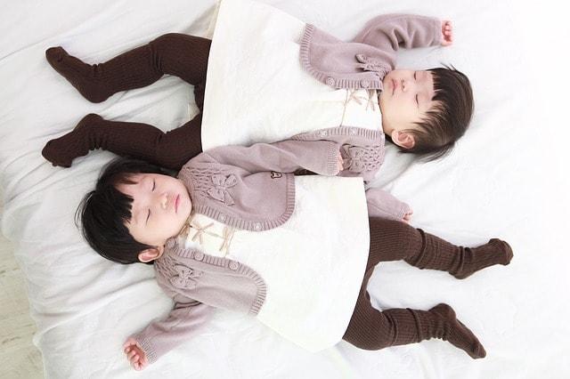 twins-632429_640